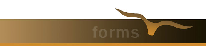 mavs-page-form